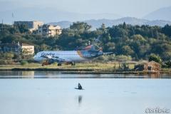 A Cormorant flying near Corfu airport.